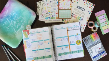 Plan With Me June 2016 | SoCal Planner Addicts Haul